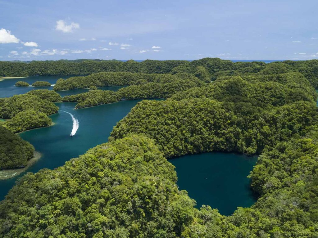 Marine lakes and rock islands aerial photography in palau