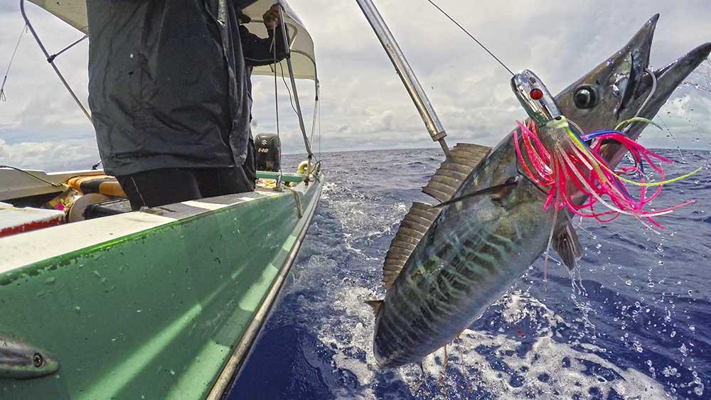 sports fishing palau