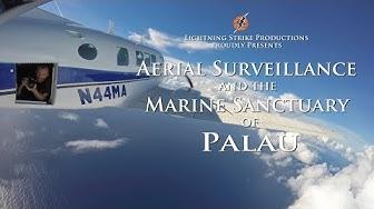 Aerial surveillance aircraft